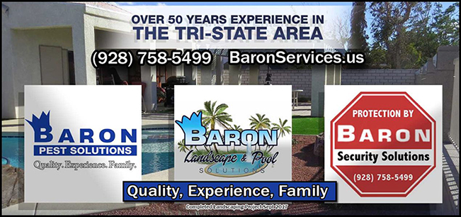 Baron Services: Pest Solutions - Landscape & Pool - Security Solutions